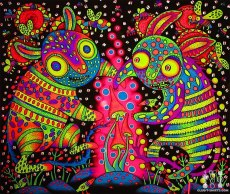 Psychedelic images (67)