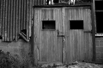 Industrial Decay (59)