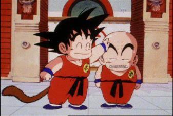 Dragon Ball (95)
