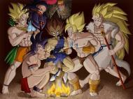 Dragon Ball Crazy Pics (118)