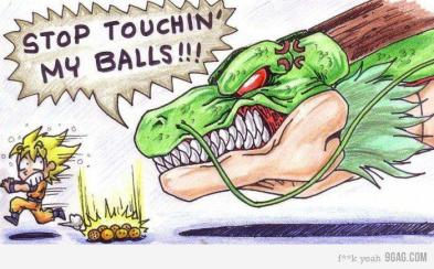 Dragon Ball Crazy Pics (85)