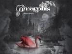 amorphis (1)