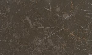 Chios Brown Greek Marble