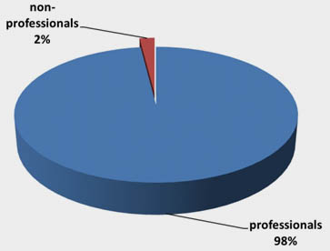 Visitors by professional status