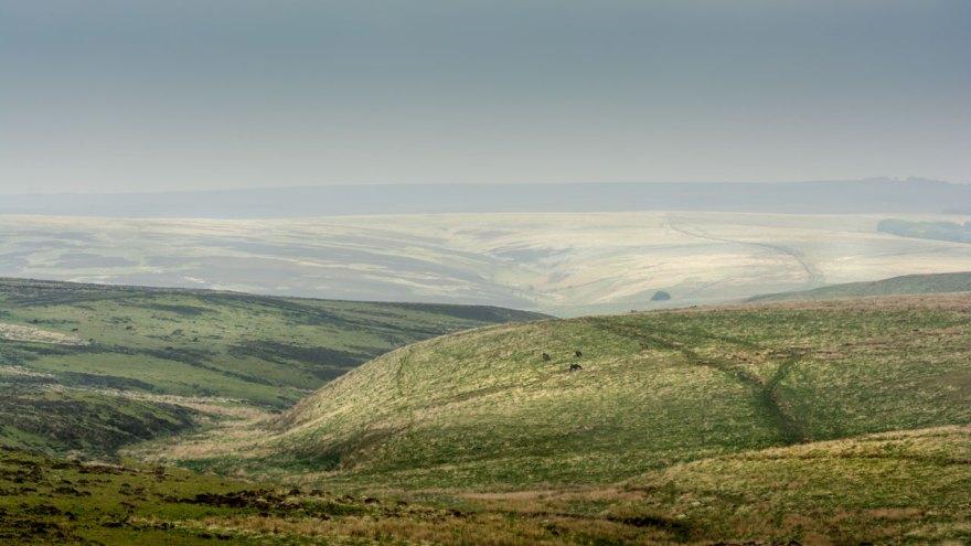 Der Exmoor Nationalpark: sanfte Hügel und endlose Weite.