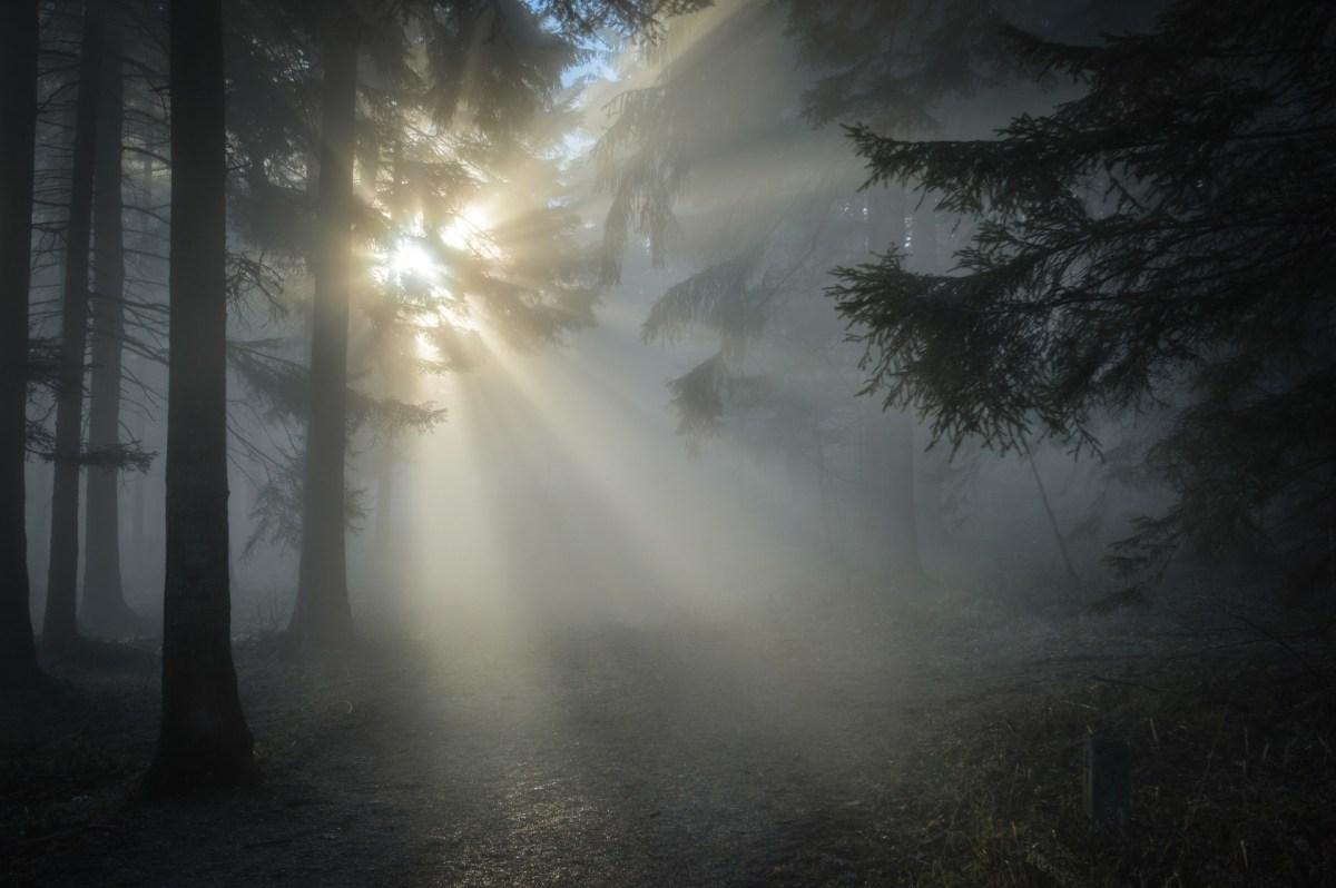 Levanta la mirada al cielo, pregunta, escucha y encuentra la salida hacia otra vida