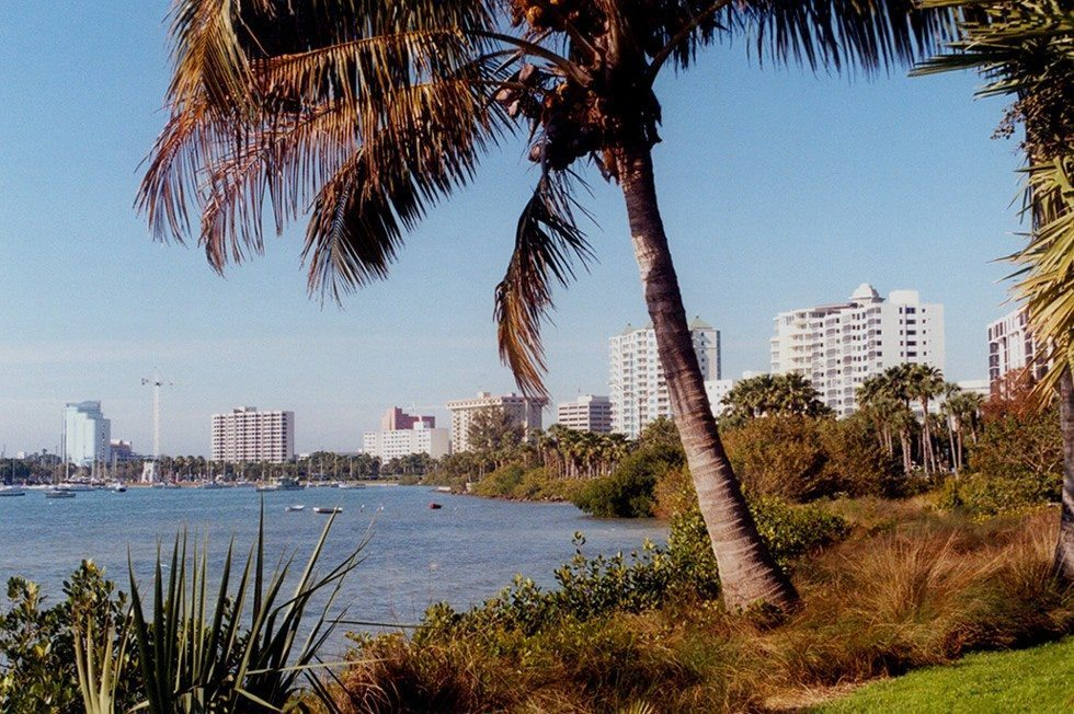 Sarasota Bay From Marie Selby Botanical Gardens