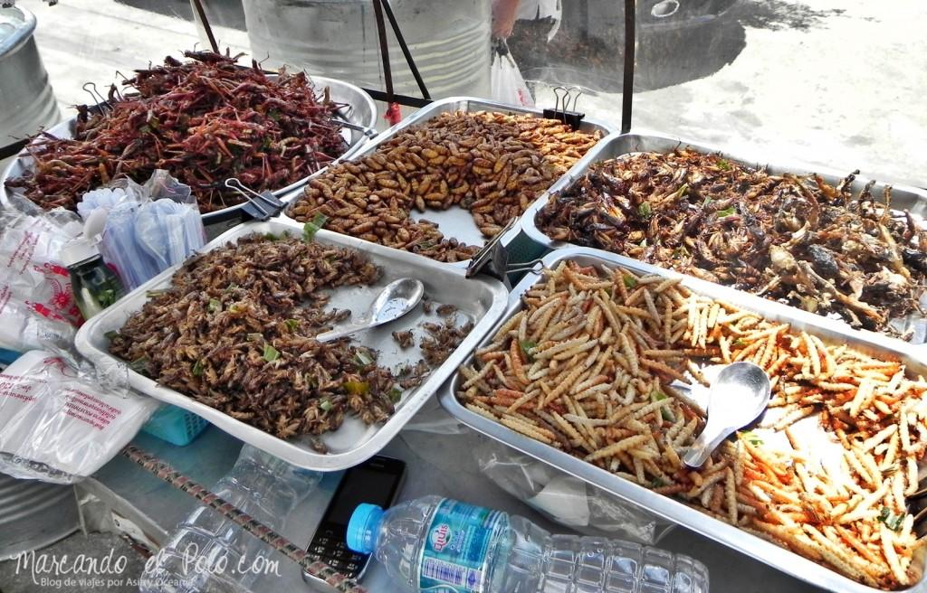 Primer viaje a Bangkok: puesto de bichos