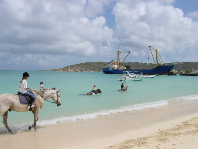 riding horses on the beach image
