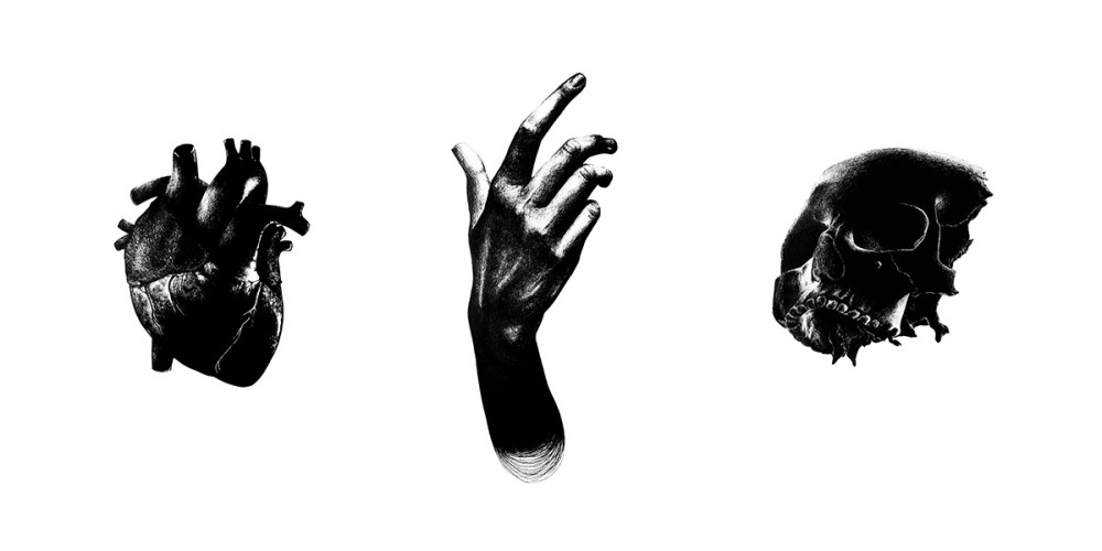 marceau_truffaut_black_anatomy_thumbnail