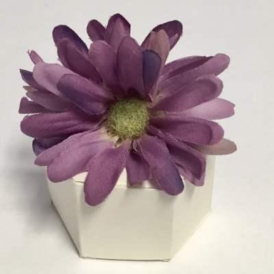 FBF-DF-Purple