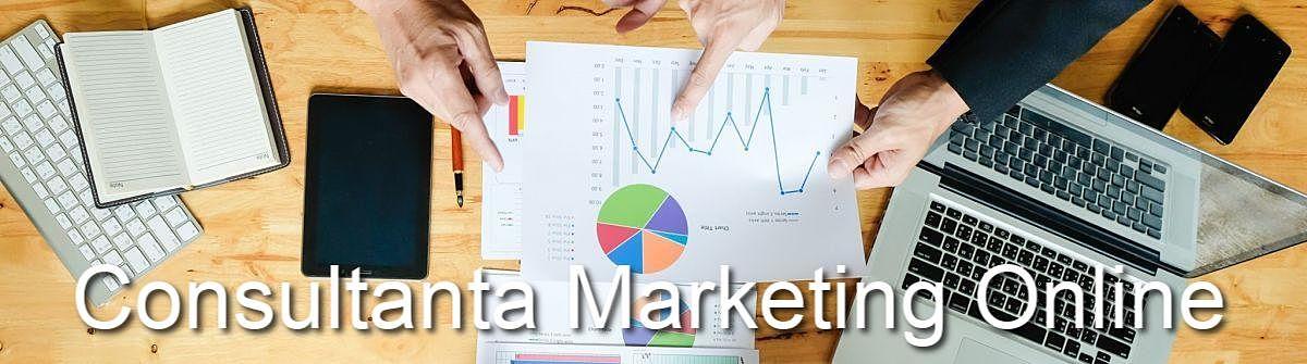 Consultanta Marketing Online in Slatina