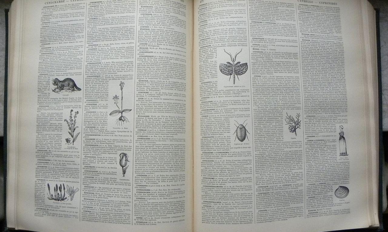 1280px-nouveau_dictionnaire_larousse_page.jpg