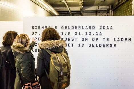 biennale gelderland, Biënnale Gelderland 2014