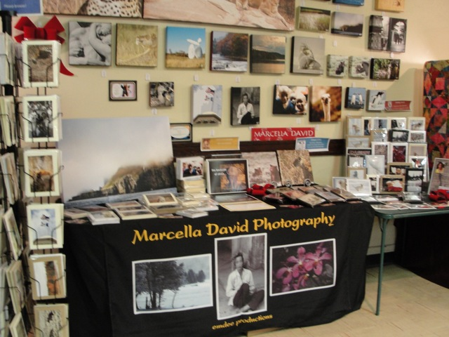 My booth at the Art Show!