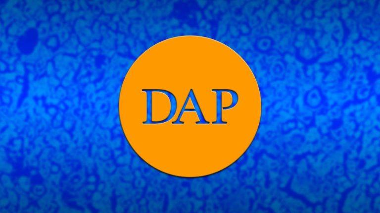 DAP: el logotipo.