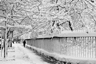 Gramercy Park is Frozen