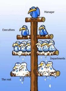 Corporate pyramid scheme - Marc Frank Montoya dot com