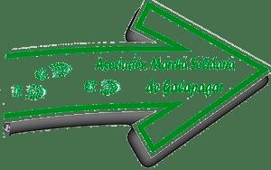 Marcha Solidaria Galapagar