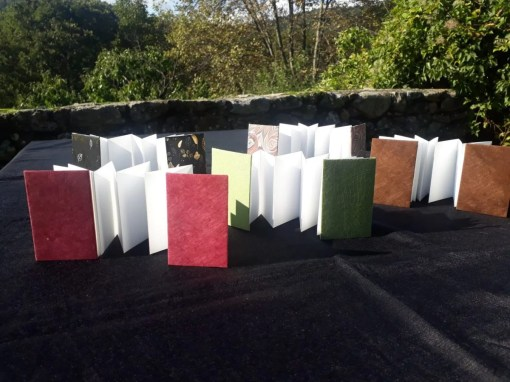 papiers-relies-petit leporello accordeon13