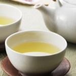 意外!? お茶の賞味期限とおすすめの保存方法/日本茶の基本 vol.6