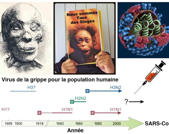 27•La momie, le racisme et le virus