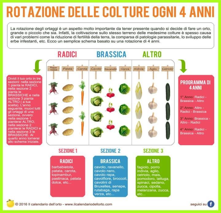 rotazioni_colture