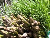 Frutta e verdura di stagione a marzo e aprile