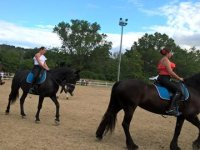 Passeggiate, escursioni e trekking a cavallo