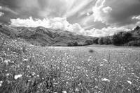 Escursione Amatrice-Monti della Laga