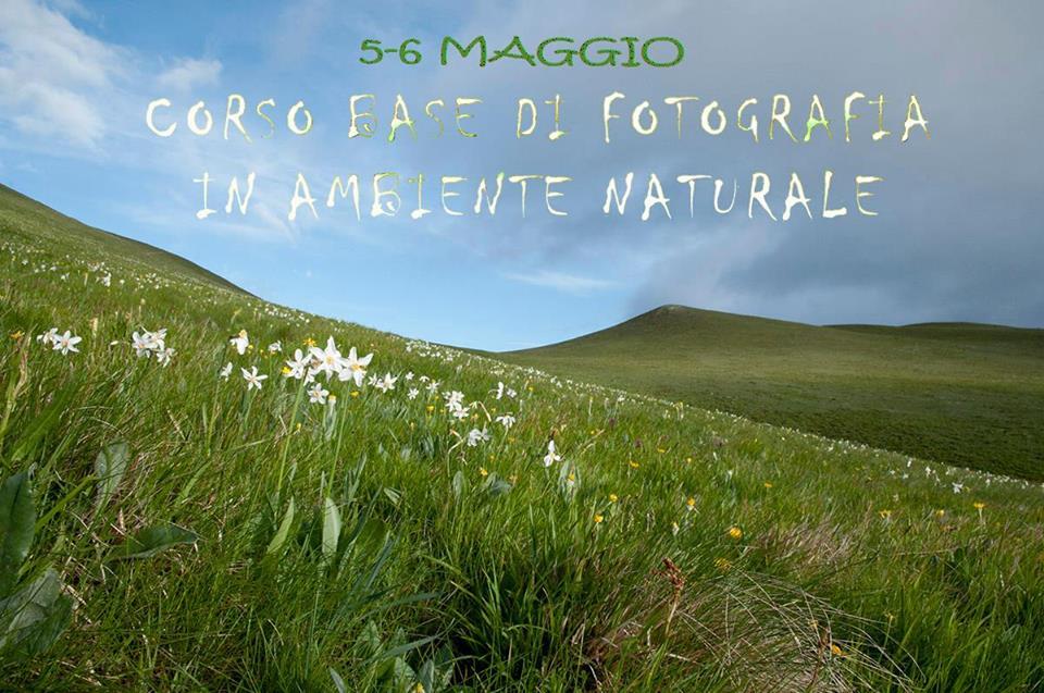 Corso base di fotografia in ambiente naturale