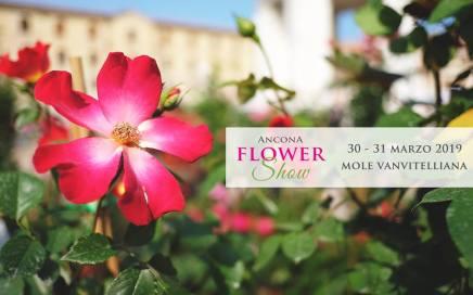 Ancona flower show