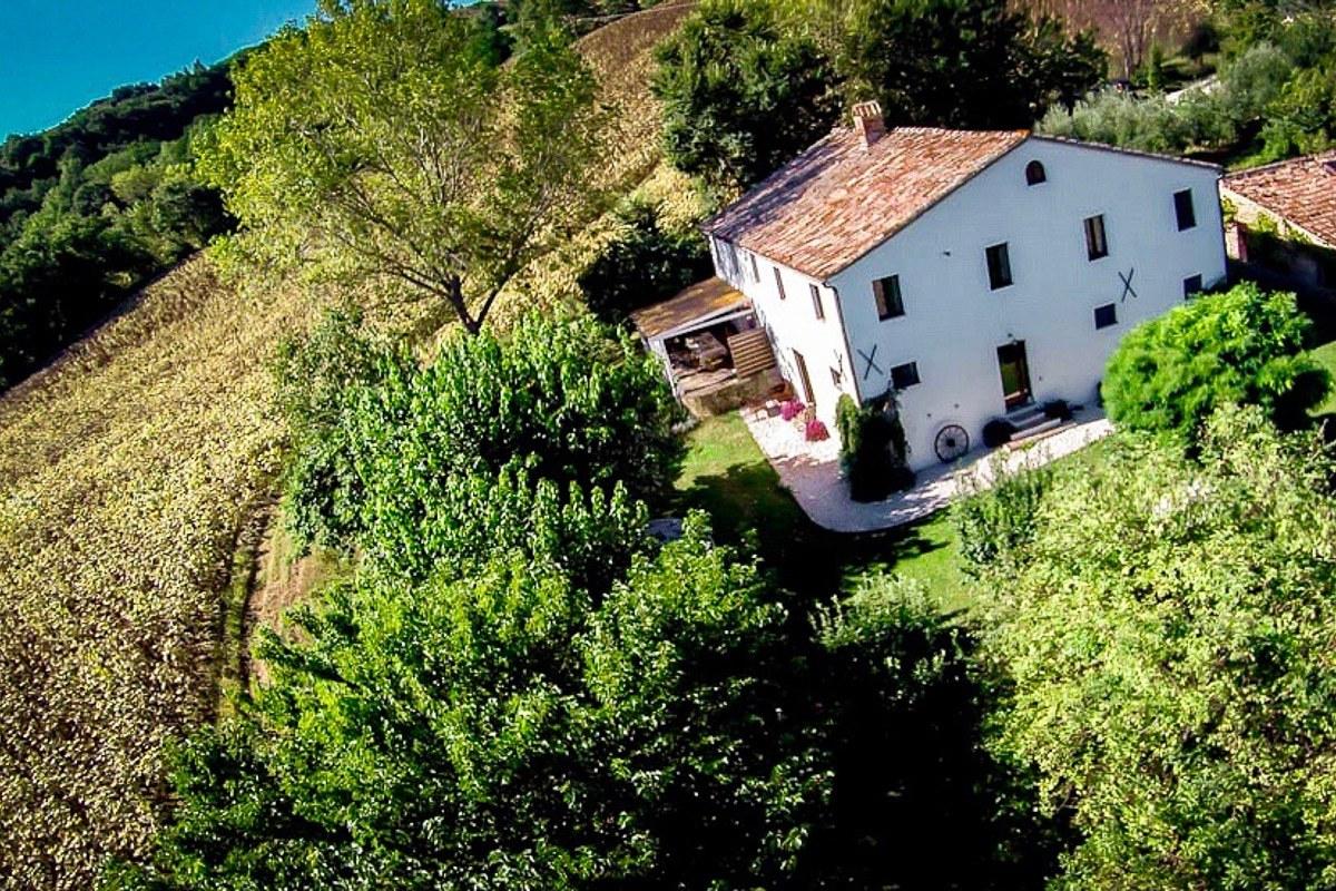 Villa Pinocchia