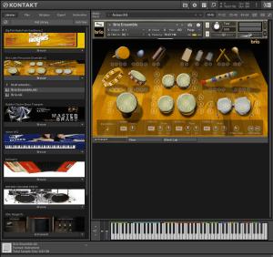 Brio Latin Percussion Ensemble v2 1,4 GB ( Percução ) ( 32 Bits )