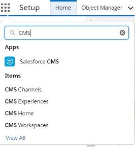 """, Comment utiliser le système de gestion de contenu Salesforce (CMS)<span class=""""wtr-time-wrap after-title""""><span class=""""wtr-time-number"""">1</span> minutes de lecture</span>"""