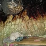 interno dell'Angolum - la casa dei Pigmei