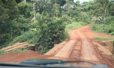 Un ponte di legno in Camerun