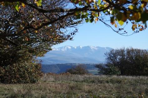 Il Foliage di Canfaito. La prima neve sui Monti Azzurri in lontananza.