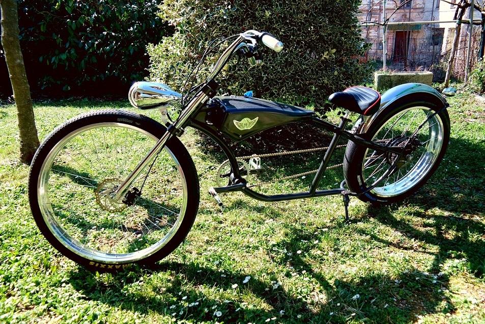 Una bicicletta speciale che luccica sul prato.
