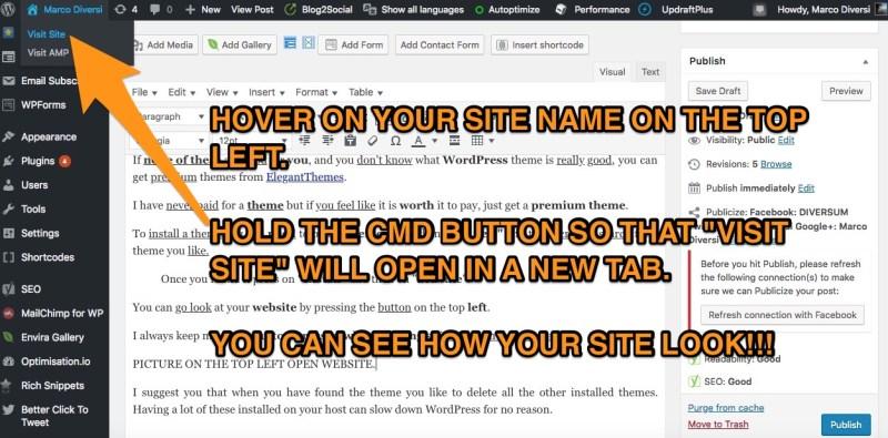 visit website wordpress
