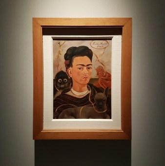 il volto di frida kahlo