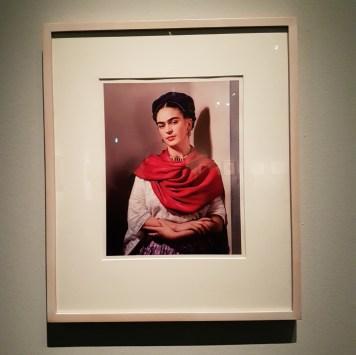 la mostra di Frida Kahlo a Milano - il volto di Frida Kahlo Foto