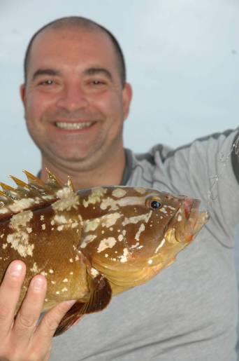 Anche il polpo manovrato spesso risulta micidiale per la pesca della cernia