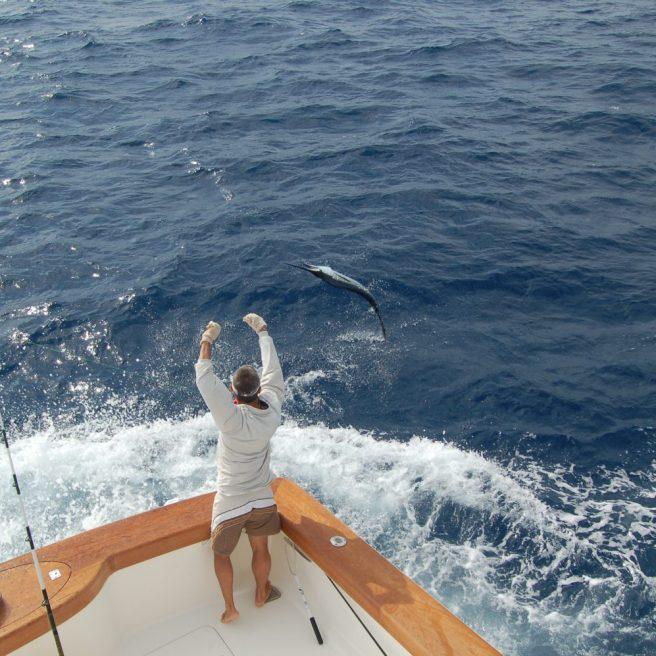 Il Mate afferra il terminale per portare il pesce sottobordo