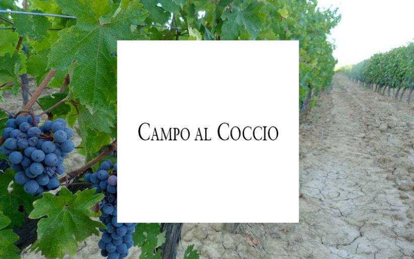 campo-al-coccio