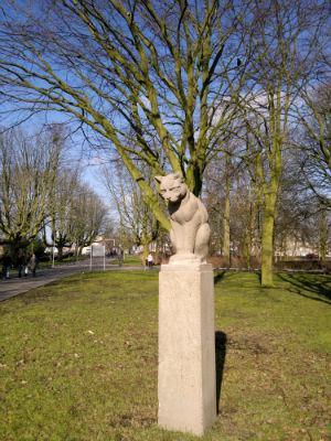 zuiderpark-kat