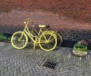 Geverfde-fietsen