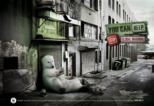 Oso polar nas rúas