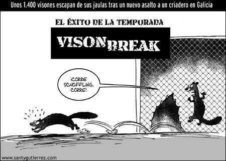Vison Break