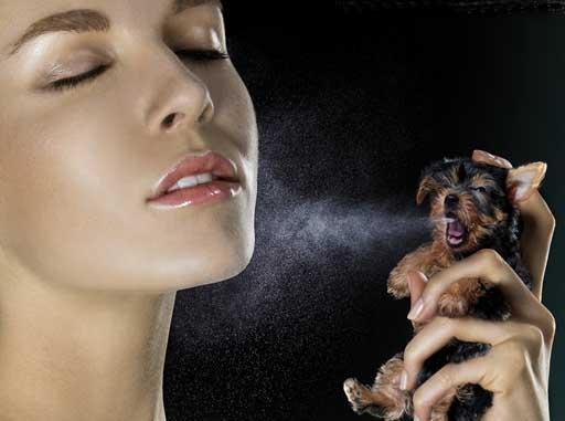 Anuncio de ENPA Spray